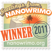 5 Lessons I Learned from NaNoWriMo 2011